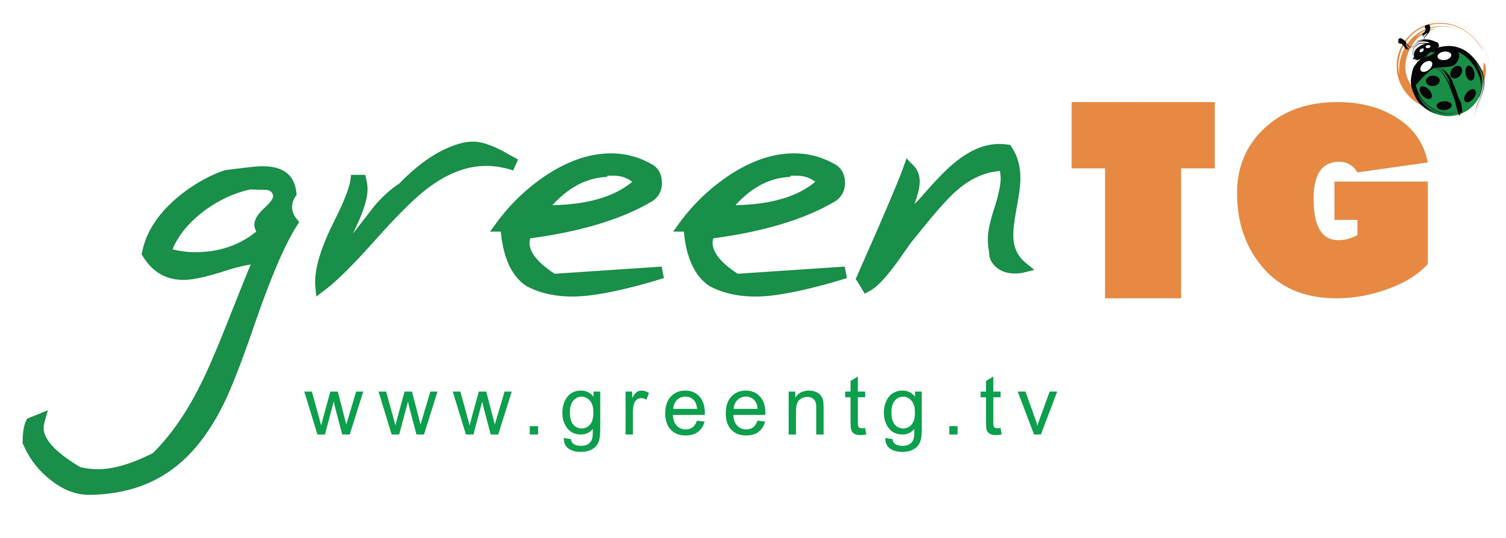 Green TG – Emergenza incendi in California